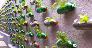 doodad-vertical-gardening-idee